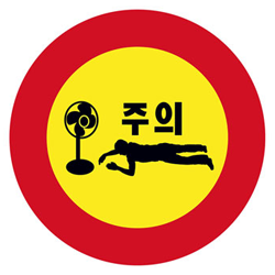 Korean Fan Death