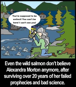 Even the wild salmon don't believe Alexandra Morton anymore