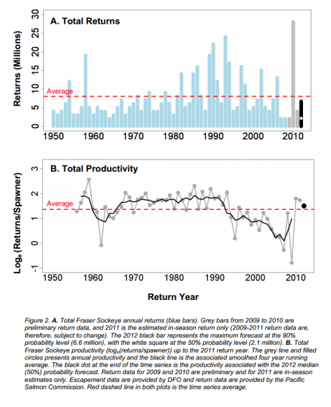 Projected 2012 Fraser sockeye returns and productivity