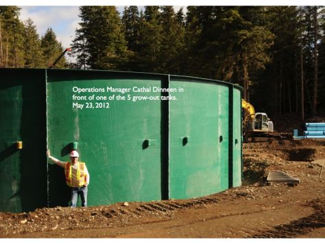The tanks under construction in Port McNeill for the 'Namgis closed containment project.