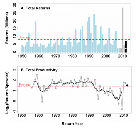 Total Fraser River sockeye returns and productivity since detailed records began in the 1950s.