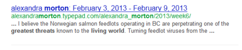 Morton_google_search_result