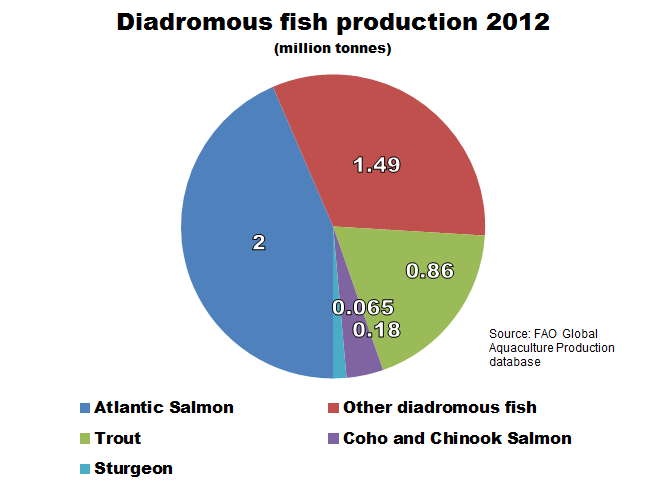 fish production Also, aquaculture, not ocean fishing, accounts for most of the overall increase in  production -- china produces almost two-thirds of farmed fish.
